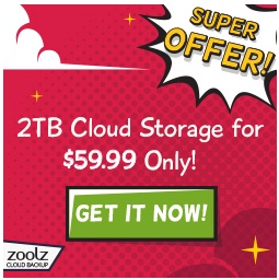 BigMind by zoolz discount code
